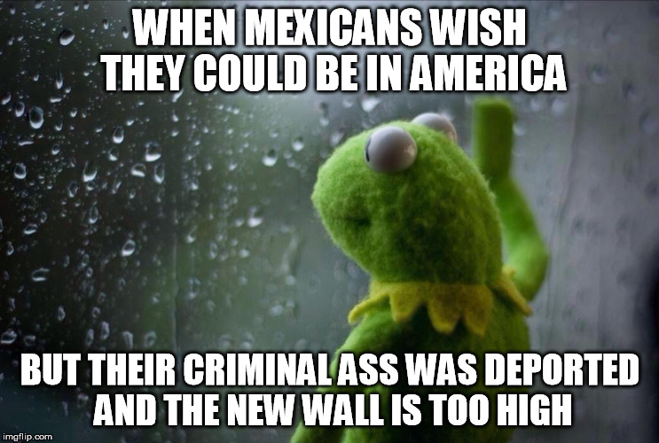 mexican kermit at window | WHEN MEXICANS WISH THEY COULD BE IN AMERICA BUT THEIR CRIMINAL ASS WAS DEPORTED AND THE NEW WALL IS TOO HIGH | image tagged in mexicans,kermit,frog,deport,sad | made w/ Imgflip meme maker