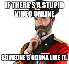 Hmm Captain Obvious  | IF THERE'S A STUPID VIDEO ONLINE SOMEONE'S GONNA LIKE IT. | image tagged in hmm captain obvious | made w/ Imgflip meme maker
