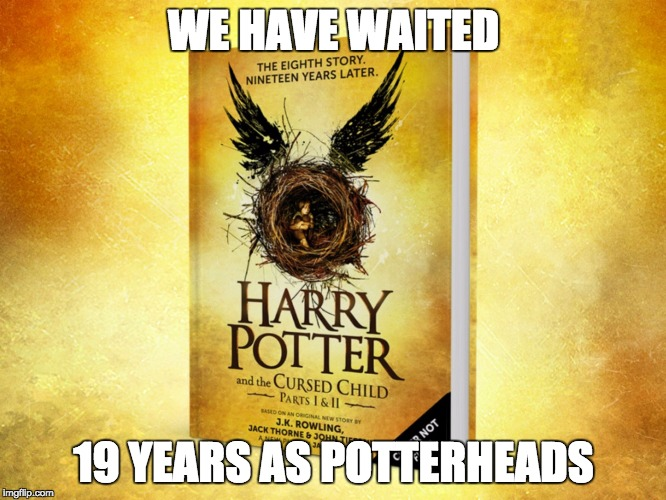 Harry Potter and the Cursed Child Meme |  WE HAVE WAITED; 19 YEARS AS POTTERHEADS | image tagged in harry potter meme | made w/ Imgflip meme maker