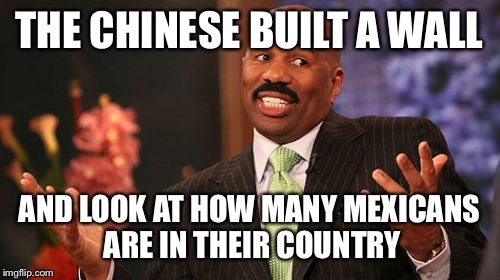 Steve Harvey | THE CHINESE BUILT A WALL AND LOOK AT HOW MANY MEXICANS ARE IN THEIR COUNTRY | image tagged in memes,steve harvey | made w/ Imgflip meme maker