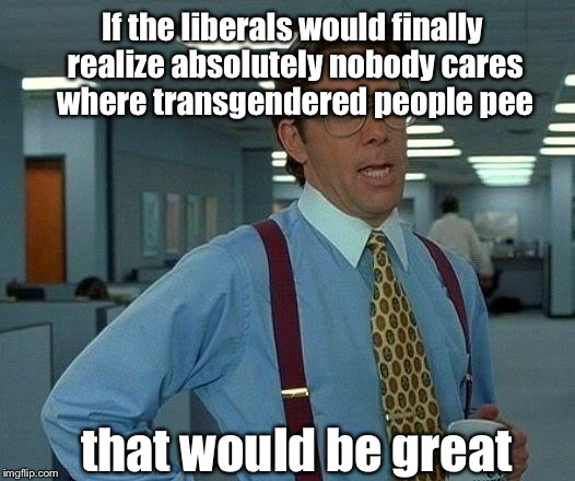 It's not about transgendered. No one knows who they are. It's about heterosexual asses using the term to peep and perv | If the liberals would finally realize absolutely nobody cares where transgendered people pee that would be great | image tagged in memes,that would be great,equality,pervert,transgender bathroom | made w/ Imgflip meme maker