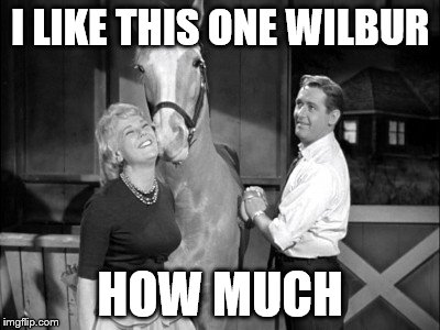 I LIKE THIS ONE WILBUR HOW MUCH | made w/ Imgflip meme maker