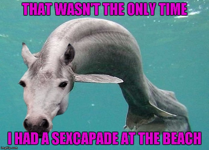 THAT WASN'T THE ONLY TIME I HAD A SEXCAPADE AT THE BEACH | made w/ Imgflip meme maker