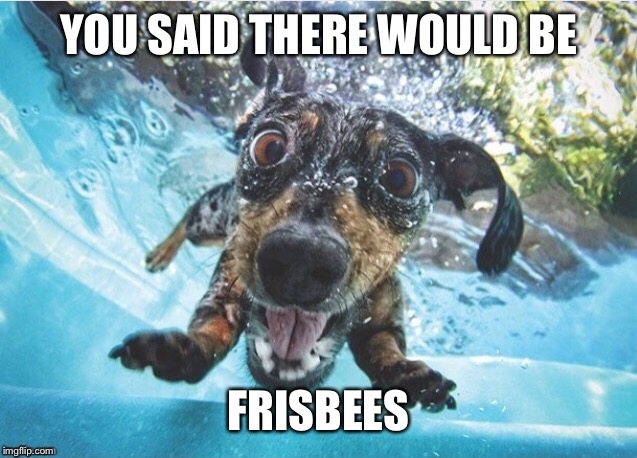 YOU SAID THERE WOULD BE FRISBEES | made w/ Imgflip meme maker