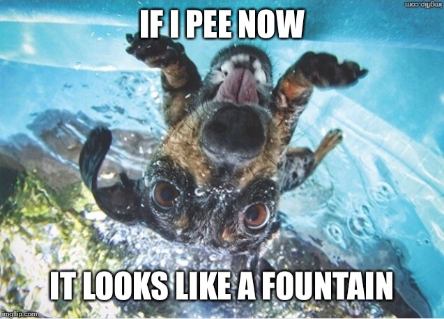 IF I PEE NOW IT LOOKS LIKE A FOUNTAIN | made w/ Imgflip meme maker