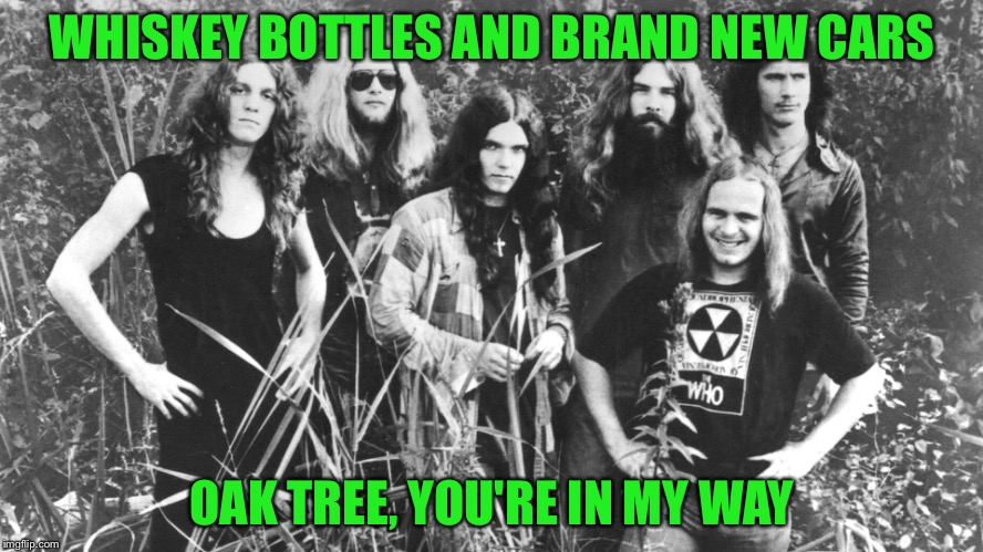 WHISKEY BOTTLES AND BRAND NEW CARS OAK TREE, YOU'RE IN MY WAY | made w/ Imgflip meme maker