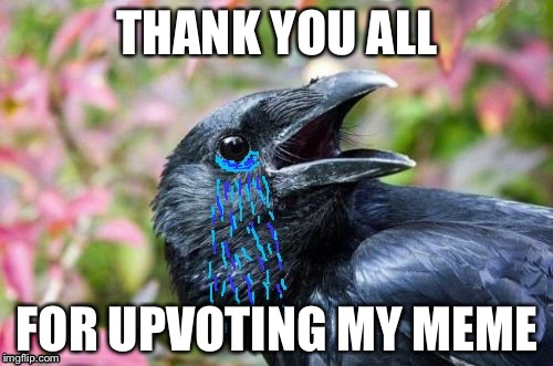 Bad Pun Crow Crying | THANK YOU ALL FOR UPVOTING MY MEME | image tagged in bad pun crow crying | made w/ Imgflip meme maker
