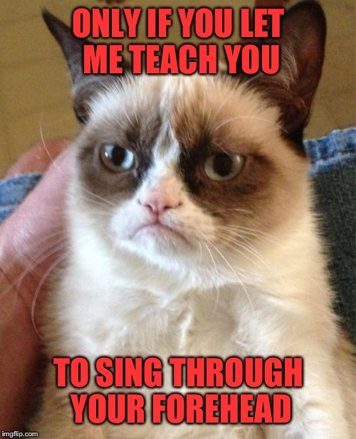 Grumpy Cat Meme | ONLY IF YOU LET ME TEACH YOU TO SING THROUGH YOUR FOREHEAD | image tagged in memes,grumpy cat | made w/ Imgflip meme maker
