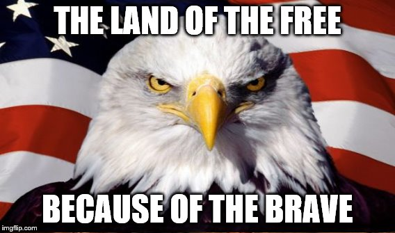 THE LAND OF THE FREE BECAUSE OF THE BRAVE | made w/ Imgflip meme maker