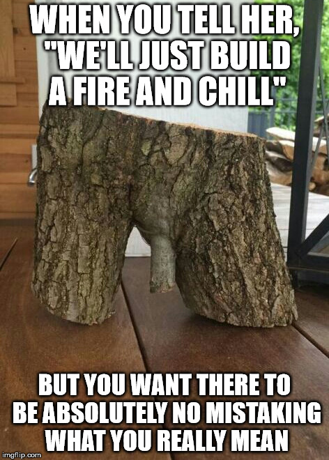 "WHEN YOU TELL HER, ""WE'LL JUST BUILD A FIRE AND CHILL"" BUT YOU WANT THERE TO BE ABSOLUTELY NO MISTAKING WHAT YOU REALLY MEAN 
