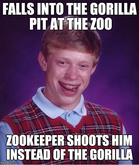 Bad Luck Brian Meme | FALLS INTO THE GORILLA PIT AT THE ZOO ZOOKEEPER SHOOTS HIM INSTEAD OF THE GORILLA | image tagged in memes,bad luck brian | made w/ Imgflip meme maker