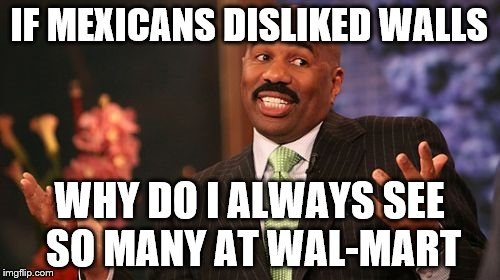 Steve Harvey Meme | IF MEXICANS DISLIKED WALLS WHY DO I ALWAYS SEE SO MANY AT WAL-MART | image tagged in memes,steve harvey | made w/ Imgflip meme maker