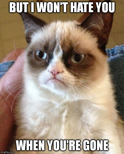 Grumpy Cat Meme | BUT I WON'T HATE YOU WHEN YOU'RE GONE | image tagged in memes,grumpy cat | made w/ Imgflip meme maker