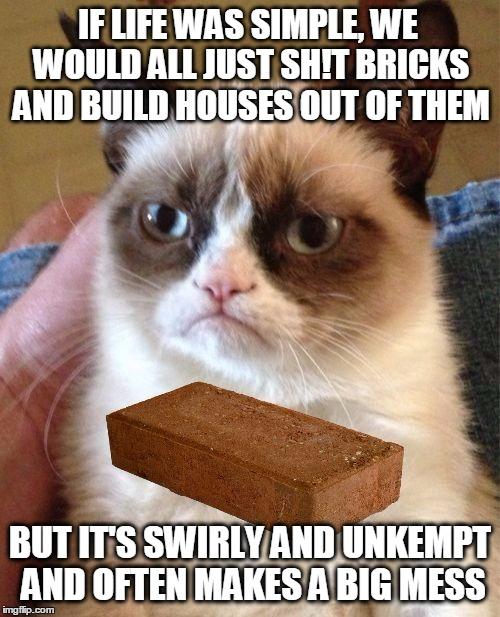Social Anxiety Cat |  IF LIFE WAS SIMPLE, WE WOULD ALL JUST SH!T BRICKS AND BUILD HOUSES OUT OF THEM; BUT IT'S SWIRLY AND UNKEMPT AND OFTEN MAKES A BIG MESS | image tagged in grumpy cat brick,life hack,psychology,social anxiety cat | made w/ Imgflip meme maker
