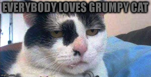 EVERYBODY LOVES GRUMPY CAT | made w/ Imgflip meme maker