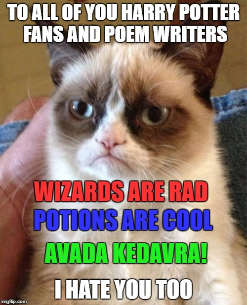 Grumpy Cat Meme | TO ALL OF YOU HARRY POTTER FANS AND POEM WRITERS I HATE YOU TOO WIZARDS ARE RAD POTIONS ARE COOL AVADA KEDAVRA! | image tagged in memes,grumpy cat | made w/ Imgflip meme maker