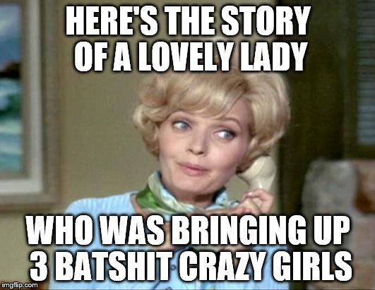 HERE'S THE STORY OF A LOVELY LADY WHO WAS BRINGING UP 3 BATSHIT CRAZY GIRLS | made w/ Imgflip meme maker
