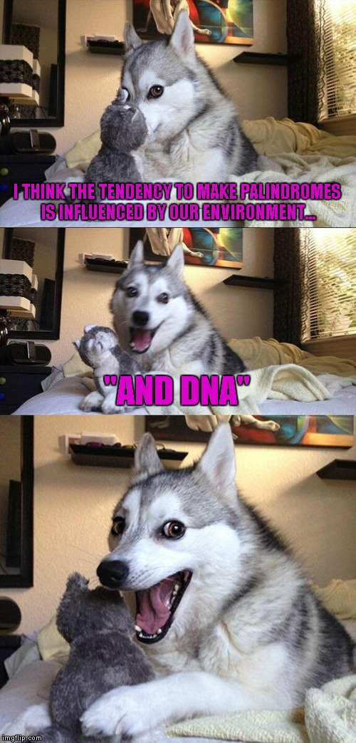 "Bad Pun Dog Meme | I THINK THE TENDENCY TO MAKE PALINDROMES IS INFLUENCED BY OUR ENVIRONMENT... ""AND DNA"" 