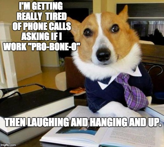 "Lawyer dog | I'M GETTING REALLY  TIRED OF PHONE CALLS ASKING IF I WORK ""PRO-BONE-O"" THEN LAUGHING AND HANGING AND UP. 