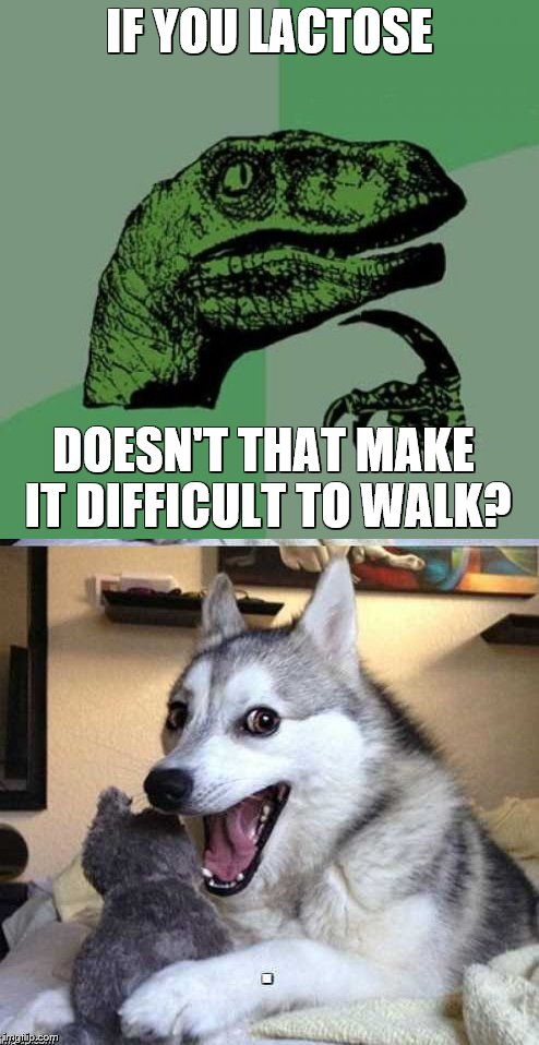 IF YOU LACTOSE DOESN'T THAT MAKE IT DIFFICULT TO WALK? | made w/ Imgflip meme maker