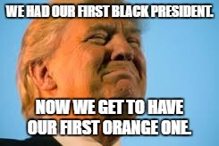 Trump 2016 |  WE HAD OUR FIRST BLACK PRESIDENT. NOW WE GET TO HAVE OUR FIRST ORANGE ONE. | image tagged in trump,orange,wall,walls,great wall of murica,frickin grapefruit | made w/ Imgflip meme maker