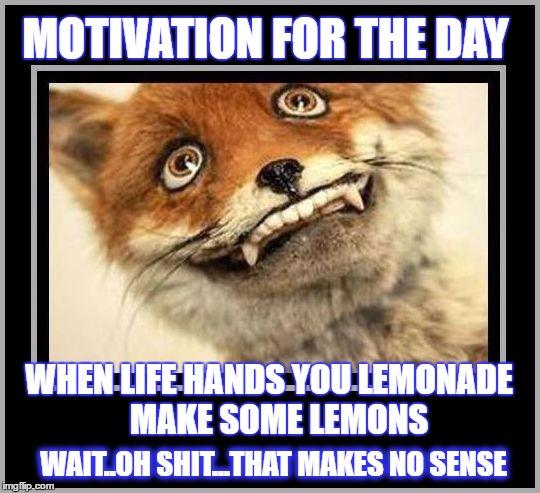 motivation imgflip