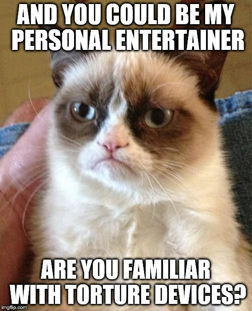 Grumpy Cat Meme | AND YOU COULD BE MY PERSONAL ENTERTAINER ARE YOU FAMILIAR WITH TORTURE DEVICES? | image tagged in memes,grumpy cat | made w/ Imgflip meme maker