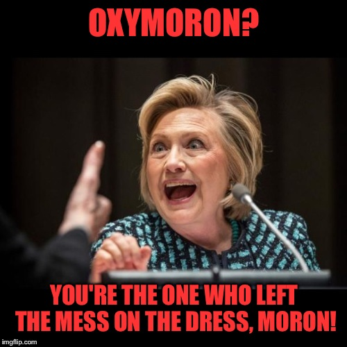 OXYMORON? YOU'RE THE ONE WHO LEFT THE MESS ON THE DRESS, MORON! | made w/ Imgflip meme maker