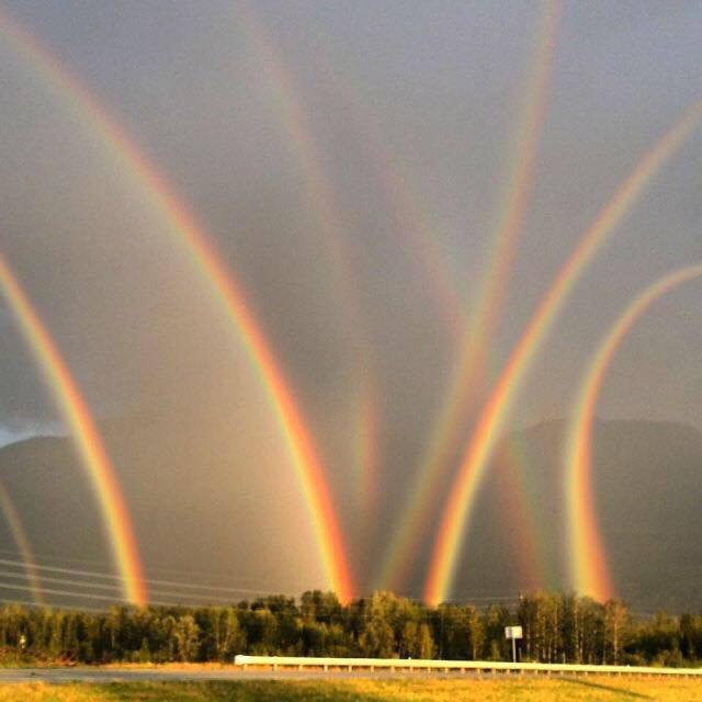 Multiple Rainbows Meme Generator - Imgflip