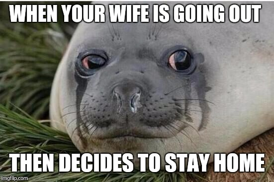 Crying Seal | WHEN YOUR WIFE IS GOING OUT THEN DECIDES TO STAY HOME | image tagged in crying seal,AdviceAnimals | made w/ Imgflip meme maker