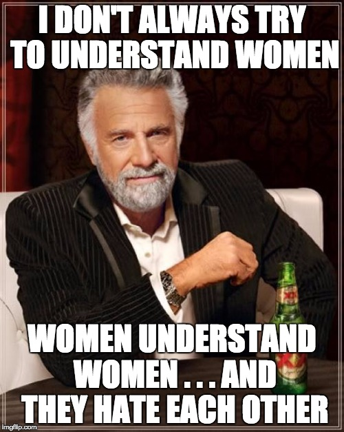 The Most Interesting Man In The World Meme | I DON'T ALWAYS TRY TO UNDERSTAND WOMEN WOMEN UNDERSTAND WOMEN . . . AND THEY HATE EACH OTHER | image tagged in memes,the most interesting man in the world | made w/ Imgflip meme maker