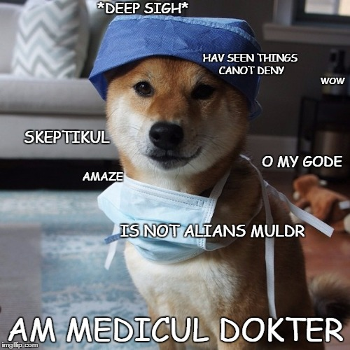 scully shibe | WOW AM MEDICUL DOKTER SKEPTIKUL HAV SEEN THINGS CANOT DENY IS NOT ALIANS MULDR AMAZE *DEEP SIGH* O MY GODE | image tagged in doge,scully,x files,i am a medical doctor | made w/ Imgflip meme maker