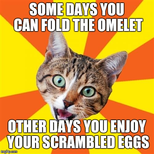 Serenity |  SOME DAYS YOU CAN FOLD THE OMELET; OTHER DAYS YOU ENJOY YOUR SCRAMBLED EGGS | image tagged in memes,bad advice cat | made w/ Imgflip meme maker