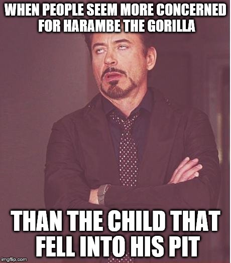The Only Thing I Can Think About When Reading That Story | WHEN PEOPLE SEEM MORE CONCERNED FOR HARAMBE THE GORILLA THAN THE CHILD THAT FELL INTO HIS PIT | image tagged in memes,face you make robert downey jr,gorilla,cincinnati,zoo,olympianproduct | made w/ Imgflip meme maker