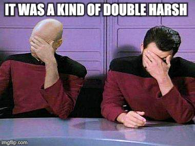double palm | IT WAS A KIND OF DOUBLE HARSH | image tagged in double palm | made w/ Imgflip meme maker