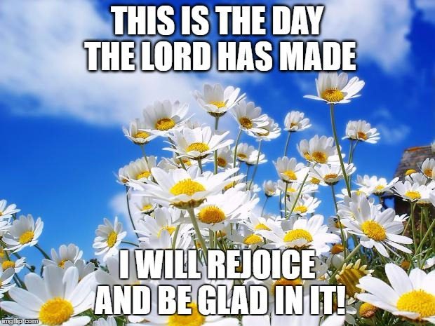 spring daisy flowers | THIS IS THE DAY THE LORD HAS MADE I WILL REJOICE AND BE GLAD IN IT! | image tagged in spring daisy flowers | made w/ Imgflip meme maker