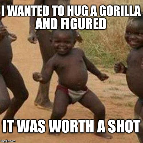 Third World Success Kid | IT WAS WORTH A SHOT I WANTED TO HUG A GORILLA AND FIGURED | image tagged in memes,third world success kid,gorilla,harambe,cincinnati | made w/ Imgflip meme maker