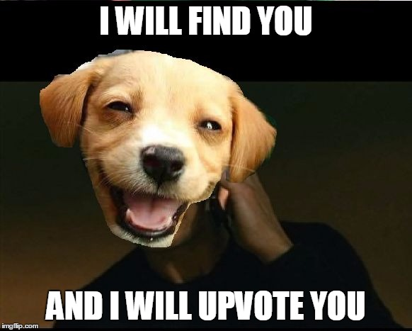 taken dog | I WILL FIND YOU AND I WILL UPVOTE YOU | image tagged in taken dog | made w/ Imgflip meme maker