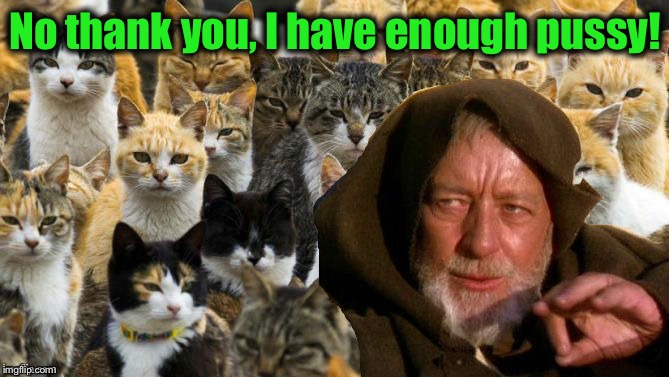 No thank you, I have enough pussy! | made w/ Imgflip meme maker