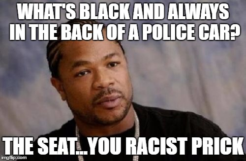 Serious Xzibit | WHAT'S BLACK AND ALWAYS IN THE BACK OF A POLICE CAR? THE SEAT...YOU RACIST PRICK | image tagged in memes,serious xzibit | made w/ Imgflip meme maker