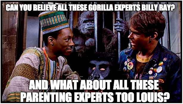 Gorilla and Parenting Experts | CAN YOU BELIEVE ALL THESE GORILLA EXPERTS BILLY RAY? AND WHAT ABOUT ALL THESE PARENTING EXPERTS TOO LOUIS? | image tagged in gorilla,zoo,bad parenting,cincinnati,eddie murphy,big boobs | made w/ Imgflip meme maker