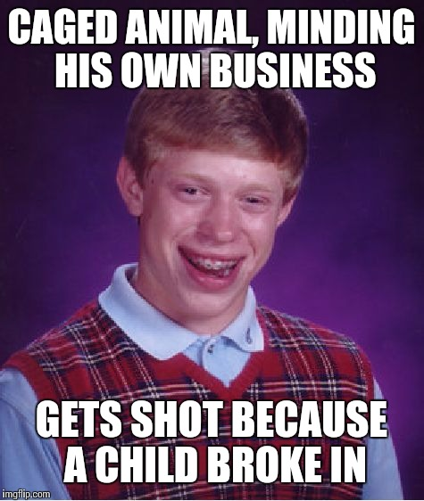 Bad Luck Brian Meme | CAGED ANIMAL, MINDING HIS OWN BUSINESS GETS SHOT BECAUSE A CHILD BROKE IN | image tagged in memes,bad luck brian | made w/ Imgflip meme maker