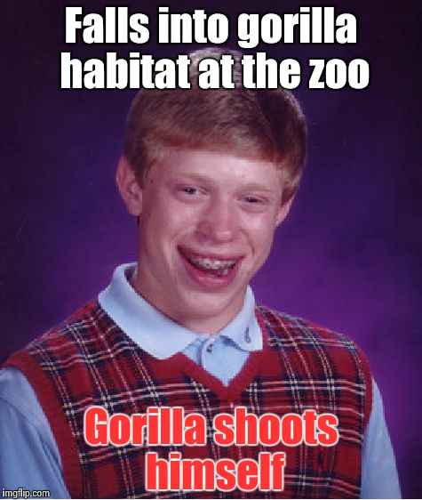 Bad Luck Brian Meme | Falls into gorilla habitat at the zoo Gorilla shoots himself | image tagged in memes,bad luck brian | made w/ Imgflip meme maker