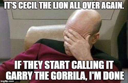 Captain Picard Facepalm Meme | IT'S CECIL THE LION ALL OVER AGAIN. IF THEY START CALLING IT GARRY THE GORRILA, I'M DONE | image tagged in memes,captain picard facepalm,gorilla | made w/ Imgflip meme maker