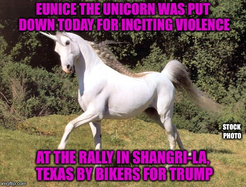 EUNICE THE UNICORN WAS PUT DOWN TODAY FOR INCITING VIOLENCE AT THE RALLY IN SHANGRI-LA, TEXAS BY BIKERS FOR TRUMP STOCK PHOTO | made w/ Imgflip meme maker