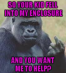 When it comes to humans, it's usually best to just mind your own business. | SO YOUR KID FELL INTO MY ENCLOSURE AND YOU WANT ME TO HELP? | image tagged in gorilla flipping the bird,memes,mind your own business,funny,funny animals,gorilla screw you | made w/ Imgflip meme maker