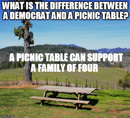 Cause they all on welfare | WHAT IS THE DIFFERENCE BETWEEN A DEMOCRAT AND A PICNIC TABLE? A PICNIC TABLE CAN SUPPORT A FAMILY OF FOUR | image tagged in democrat,welfare,poor | made w/ Imgflip meme maker