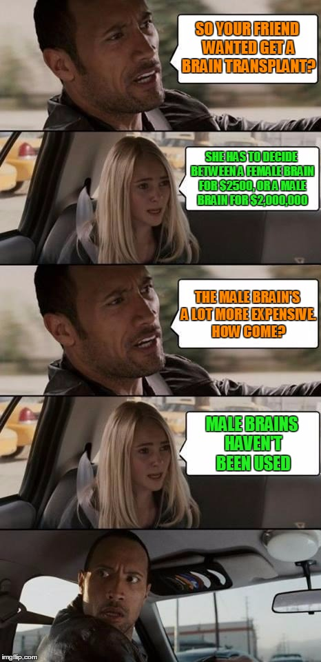 Mind over manners  | SO YOUR FRIEND WANTED GET A BRAIN TRANSPLANT? MALE BRAINS HAVEN'T BEEN USED SHE HAS TO DECIDE BETWEEN A FEMALE BRAIN FOR $2500, OR A MALE BR | image tagged in the rock driving,memes,brain,old,new,feminism | made w/ Imgflip meme maker