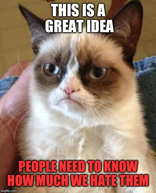 Grumpy Cat Meme | THIS IS A GREAT IDEA PEOPLE NEED TO KNOW HOW MUCH WE HATE THEM | image tagged in memes,grumpy cat | made w/ Imgflip meme maker