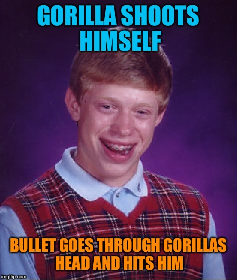 Bad Luck Brian Meme | GORILLA SHOOTS HIMSELF BULLET GOES THROUGH GORILLAS HEAD AND HITS HIM | image tagged in memes,bad luck brian | made w/ Imgflip meme maker